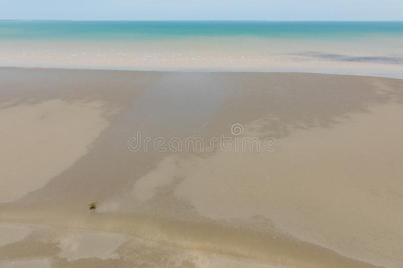 Aerial view of the sea and mudflat coastline at low tide with lone mangrove. Aerial view of the mudflat coastline at low tide with lone mangrove, Darwin stock photos