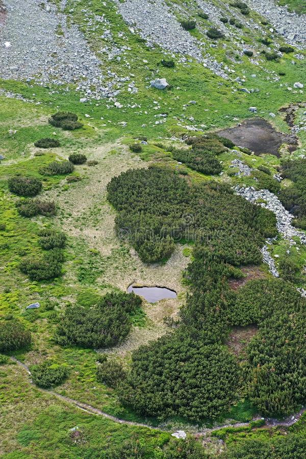 Aerial view of small rocky valley in High Tatras mountains, northern Slovakia, with groups of dwarf pines. And two blind mountain lakes stock photo