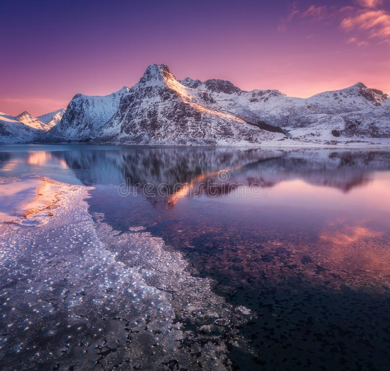 Aerial view of snowy mountains, blue sea with frosty coast. Reflection in water and purple sky at colorful sunset in Lofoten islands, Norway. Winter landscape stock photos