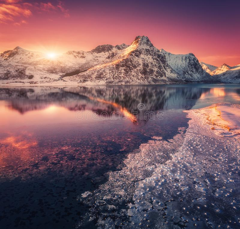 Aerial view of snowy mountains, blue sea with frosty coast. Reflection in water and purple sky at colorful sunset in Lofoten islands, Norway. Winter landscape royalty free stock photos