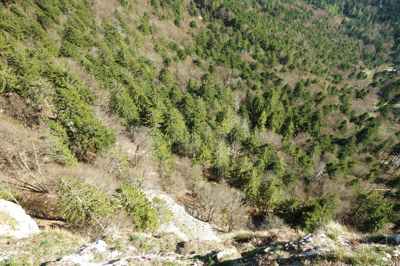 Aerial View Of steep Cliff. An aerial view looking over the edge of a steep cliff descending to a sharp mountain canyon valley. This was taken in autumn in a royalty free stock images