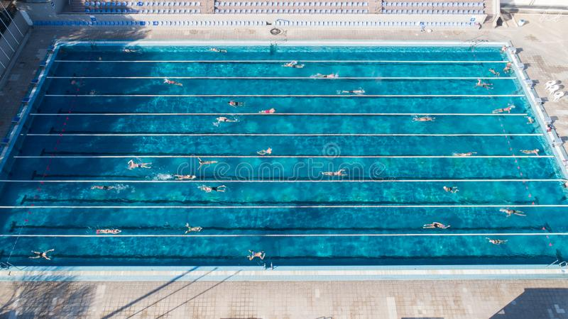 Aerial view of swimming pool with marked lanes and swimmers stock photography