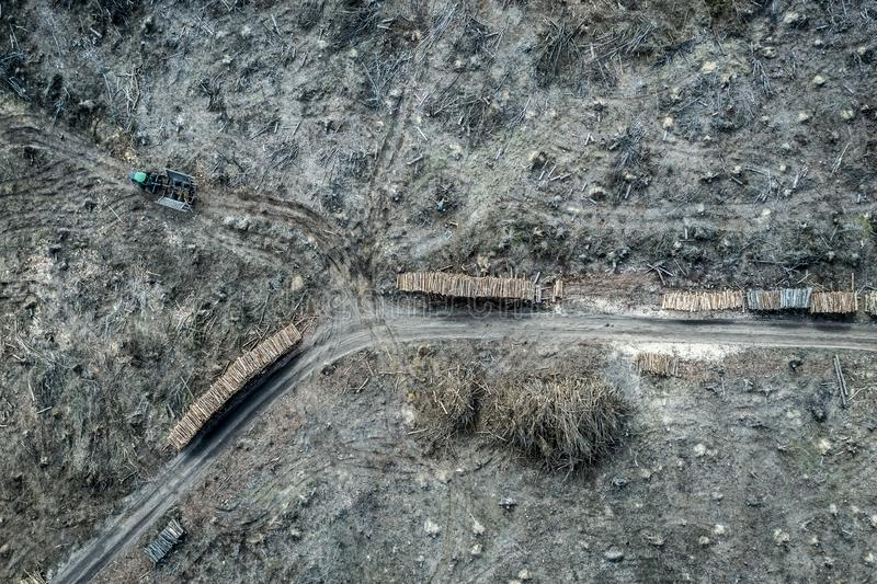 Aerial view of terrible deforestation forest for harvesting. Europe royalty free stock images