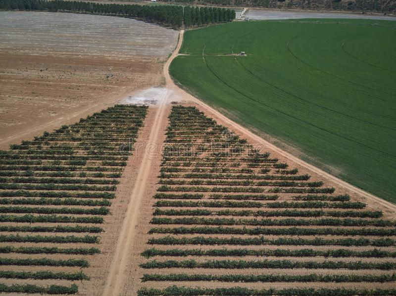 Aerial view of textures. Rows of soil with plantations. Pattern rows of furrows in a plowed field prepared to plant crops in sprin stock photo