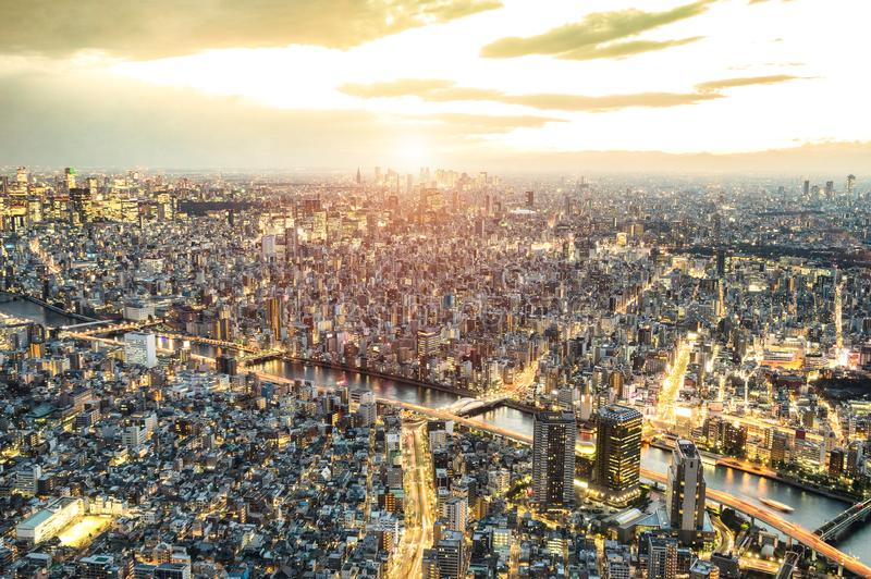 Aerial view of Tokyo skyline from above at sunset and blue hour - Japanese world famous capital with spectacular nightscape royalty free stock photography