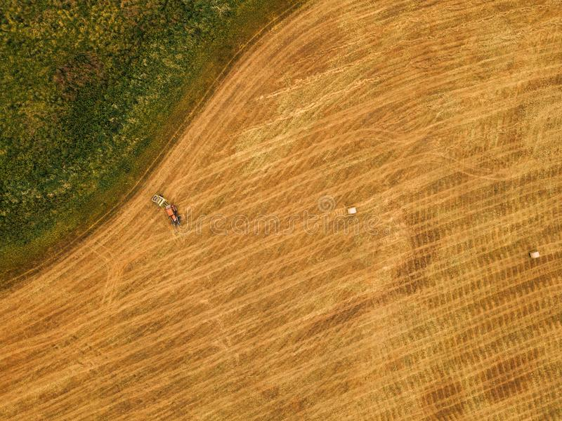 Aerial view of tractor making hay bale rolls in field. After wheat harvest, drone pov stock photo