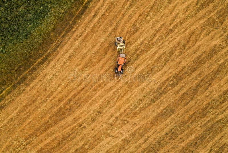 Aerial view of tractor making hay bale rolls in field. After wheat harvest, drone pov royalty free stock photography