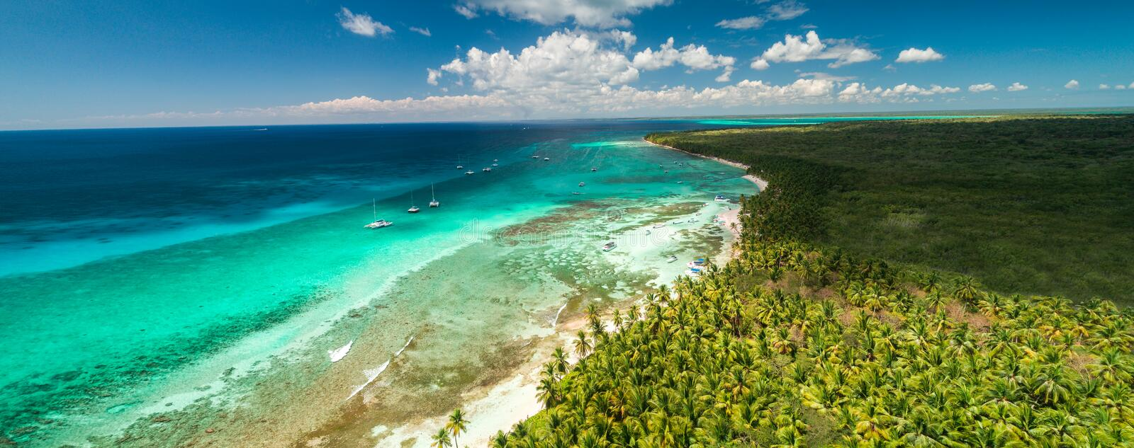Aerial view of tropical beach. Saona island, Dominican republic.  stock photography