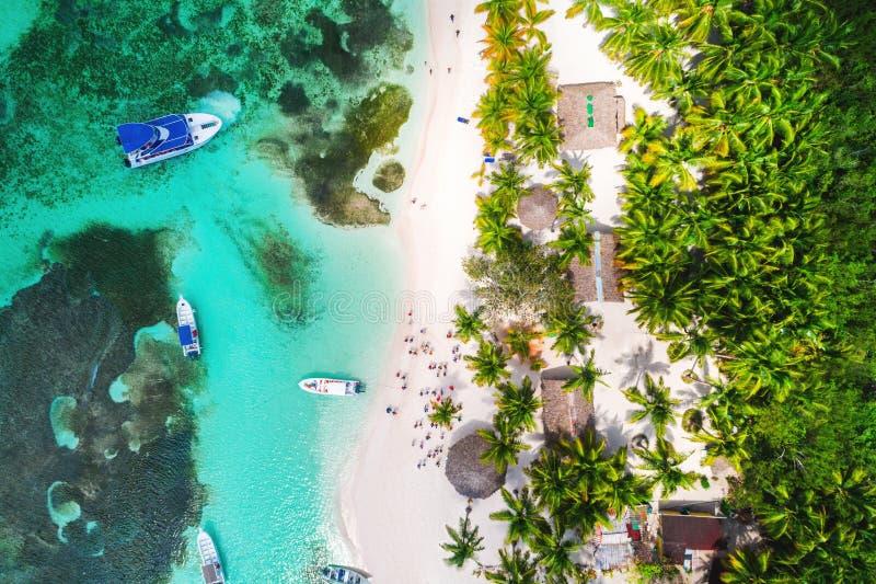 Aerial view of tropical beach. Saona island, Dominican republic.  stock photos