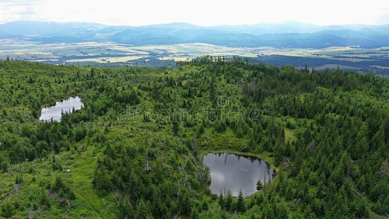 Aerial view of two smaller blind mountain lakes in High Tatras mountain, Slovakia, reflecting clouds in the skies. Surrounded by coniferous forest recovering stock photos