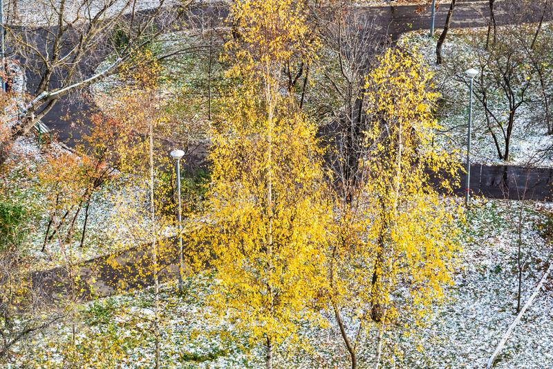 Aerial view of urban park covered by first snow stock images