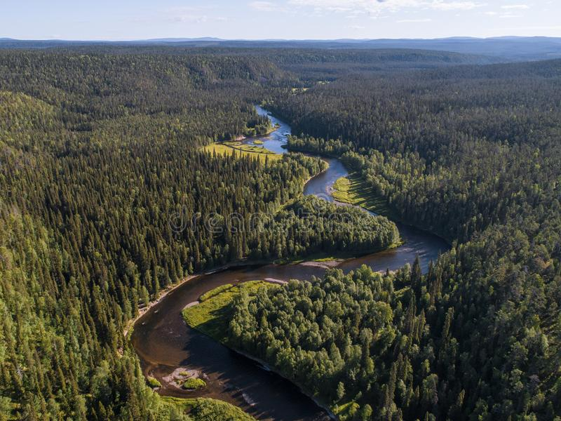 Aerial view of vast boreal aka taiga forest royalty free stock images