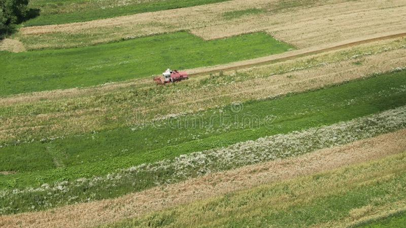 Aerial view vintage combine harvester mows wheat in field for food industry and Agribusiness farming royalty free stock photography