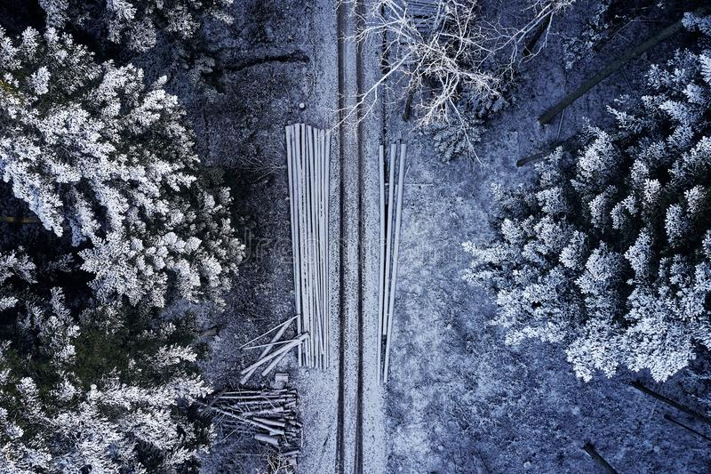 Aerial view at the winter forest from above. Pine trees as a background with a path going trough the trees. Winter. Landscape from air. Natural forest stock image