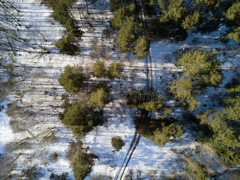Aerial view of winter forest covered in snow. drone photography royalty free stock images