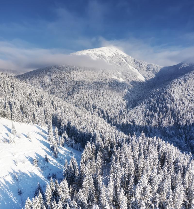 Aerial view at the winter mountains. Forest from air. Winter landscape from a drone. Snowy landscape. stock photos