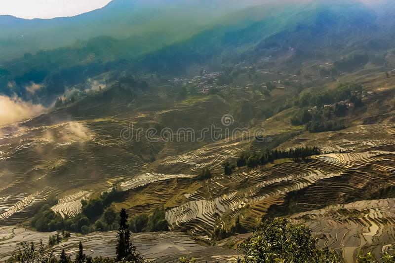 Aerial view of Yuanyang rice terraces stock photos