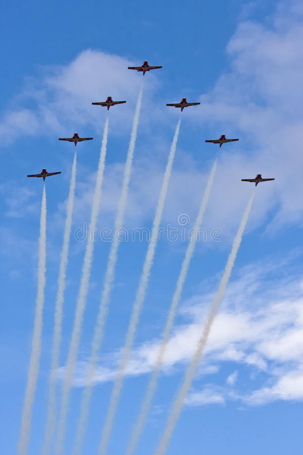 aerobatic канадская команда snowbirds стоковое изображение rf