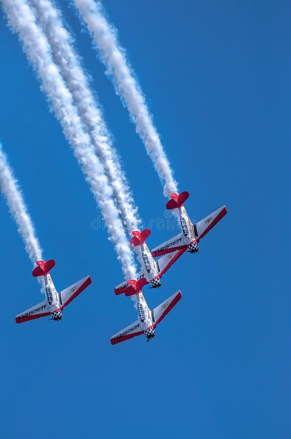 aerobatic aeroshellflygplanlag royaltyfri foto