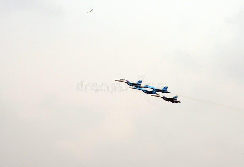 Aerobatic lagFalcons av Ryssland på nivåer Su-27 royaltyfri foto