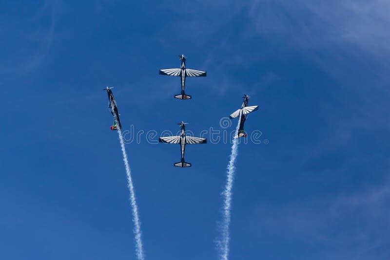 Aerobatic skärm för silverFalcons arkivfoto