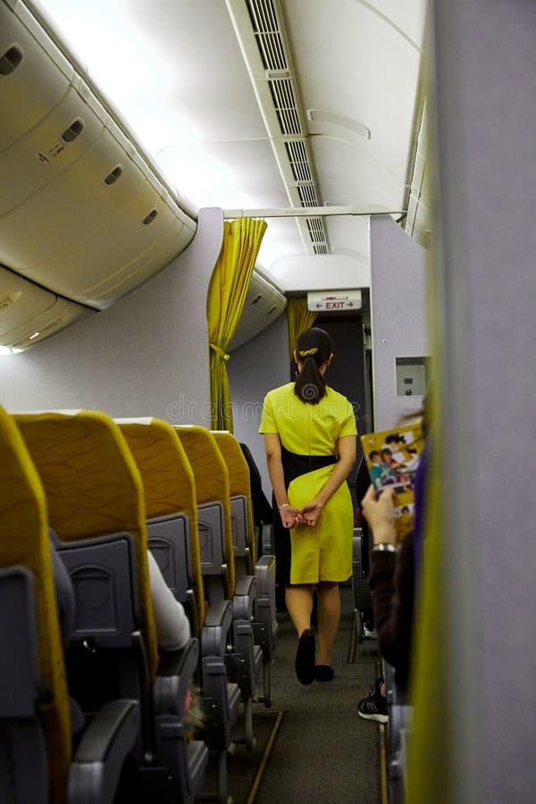 Aeromoço que serve passageiros foto de stock royalty free