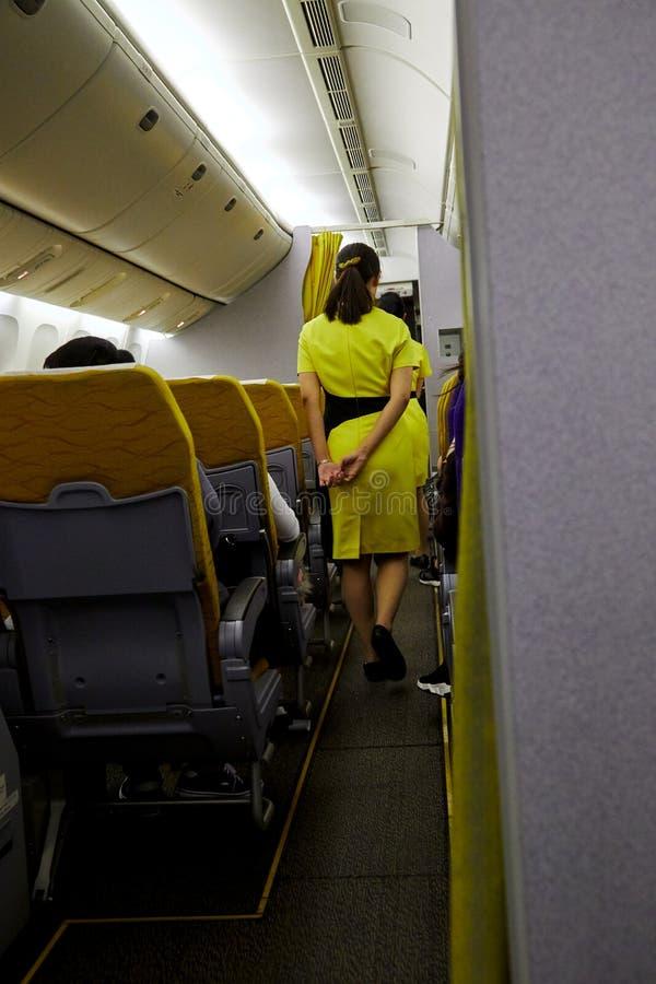 Aeromoço que serve passageiros fotografia de stock royalty free