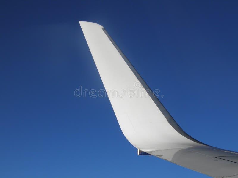 Aeroplane wing stock images