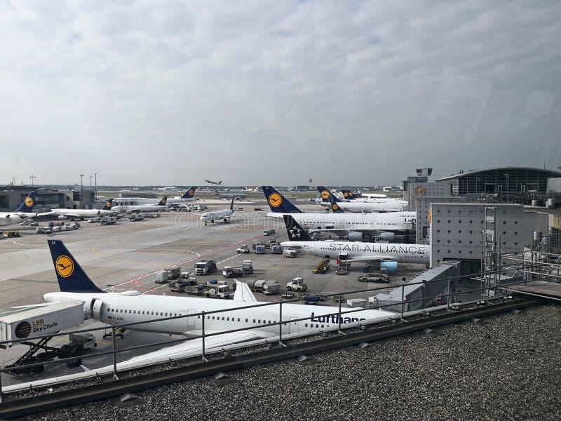 Aeroplani all'aeroporto - atterraggio a Francoforte fotografia stock