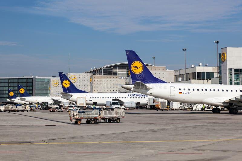 Aeroplani di Lufthansa all'aeroporto di Francoforte fotografie stock libere da diritti
