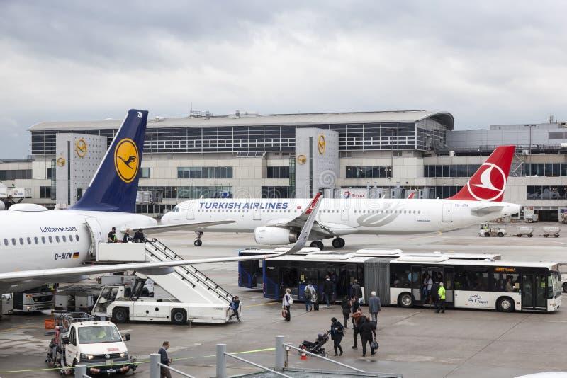 Aeroplani di Lufthansa e di Turkish Airlines a Francoforte immagine stock