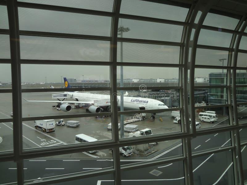 Aeroplano di Lufthansa nell'aeroporto di Haneda immagine stock libera da diritti