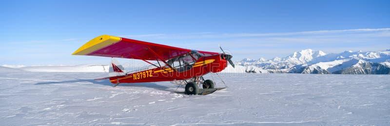 Aeroplano estupendo del arbusto del gaitero de Cub, imagen de archivo