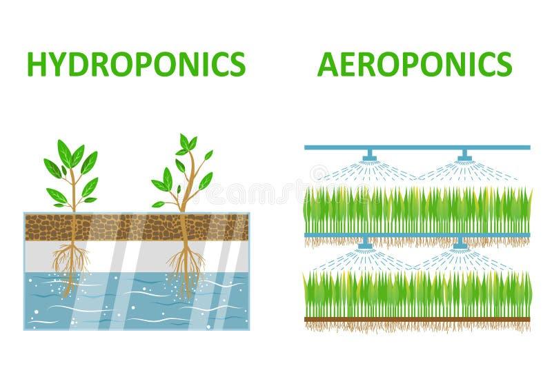 Aeroponic och hydroponic stock illustrationer