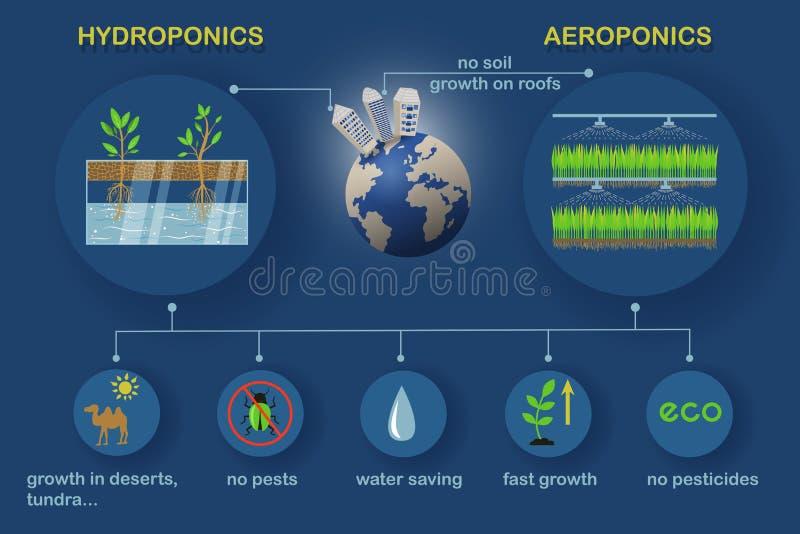 Aeroponic y sistemas hidropónicos fotos de archivo libres de regalías