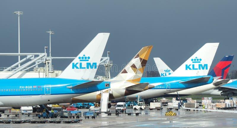 Aeroporto di Amsterdam, Schiphol Molti aeroplani al terminale immagine stock libera da diritti