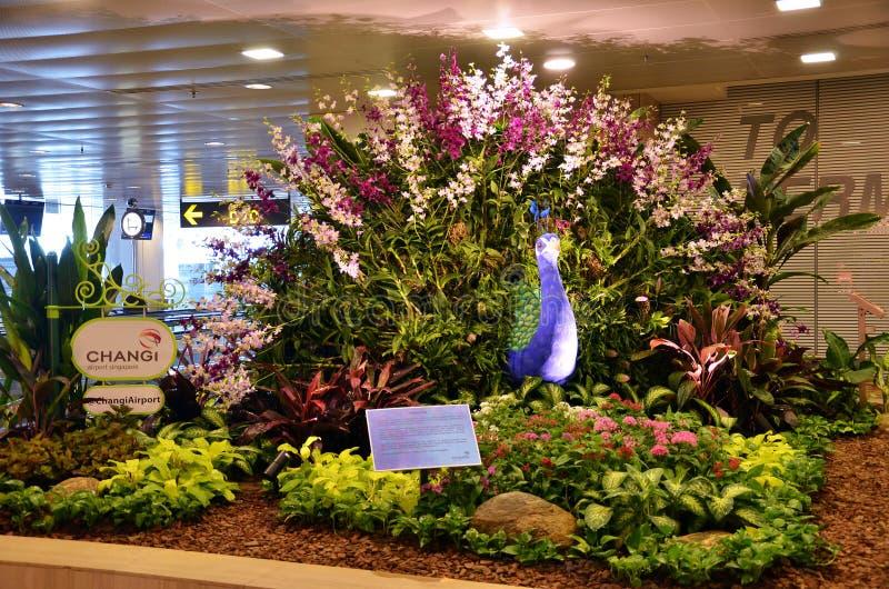 Aeroporto di Singapore Changi immagini stock libere da diritti
