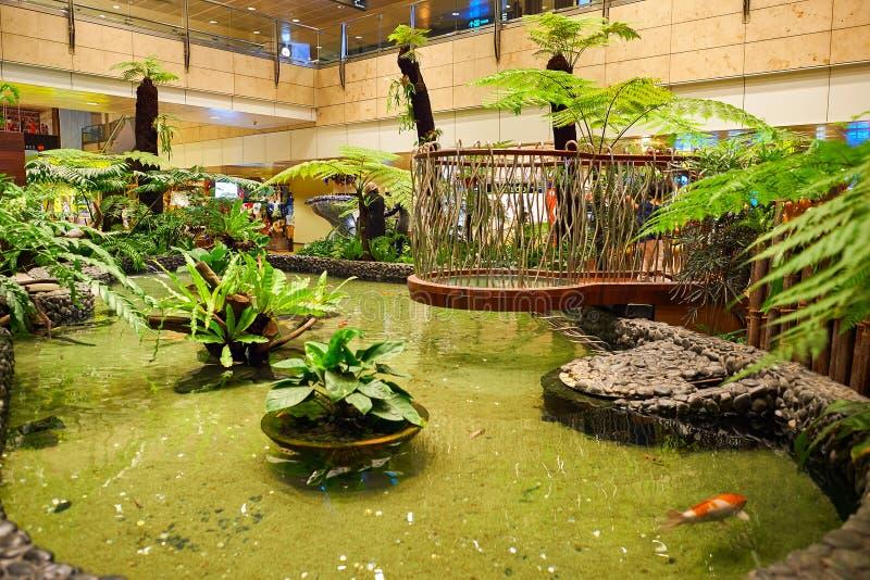 Aeroporto di Singapore Changi immagine stock libera da diritti
