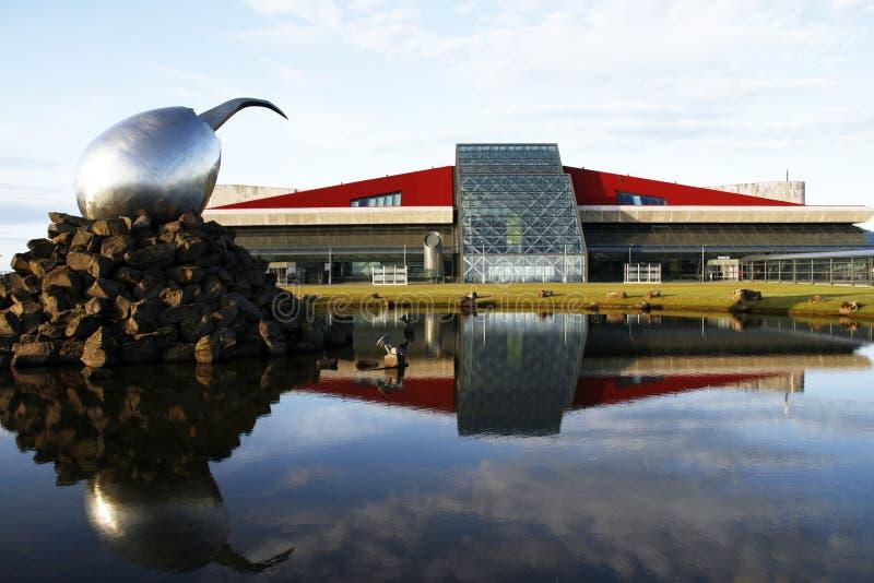 Aeropuerto en Islandia fotos de archivo