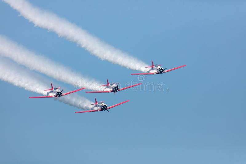 Aeroshell T-6 Aerobatic lag royaltyfri foto