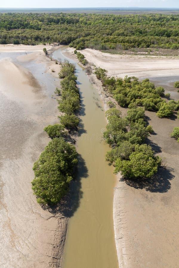 Aersyn på den stora kustlinjen vid lågvatten med kustvattenlindning och mangrovar arkivfoto