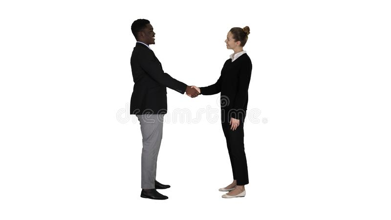 Affärsfolket möter och skakar händer på vit bakgrund royaltyfri bild