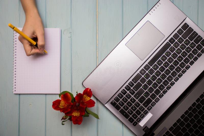 Affärshandkvinna som använder datoren royaltyfri foto