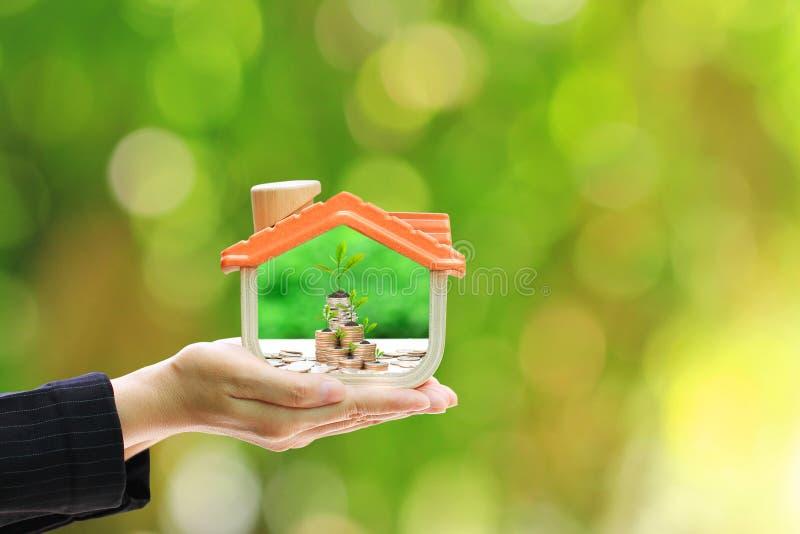 Affärskvinna som rymmer trähuset, och träd som växer på myntpengar i naturlig grön bakgrund, investering och fastighet royaltyfri fotografi