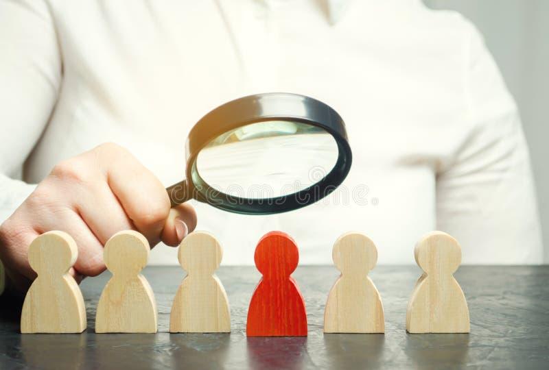 Affärskvinna som söker för nya anställda Personalrekrytering Välj en person i laget Finna begåvad anställd tilldra arkivbild