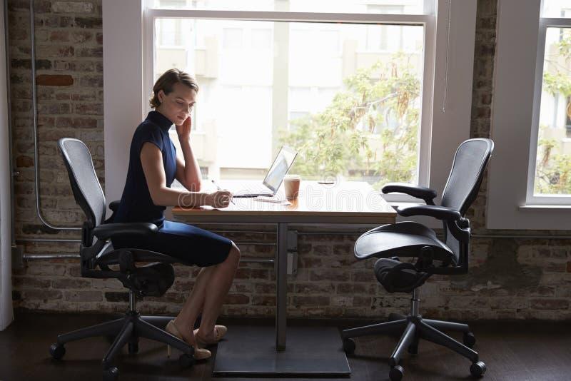 Affärskvinna Working On Laptop och danandeanmärkningar på dokument arkivfoton