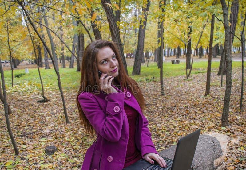 Affärskvinnan som arbetar med bärbara datorn, och telefonen i höst parkerar Kvinnan har rött hår och stora gröna ögon fotografering för bildbyråer