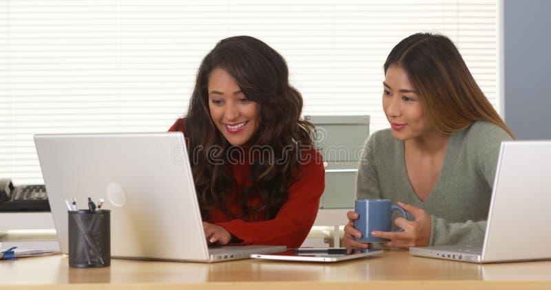 Affärskvinnor för blandat lopp som tillsammans arbetar på datoren arkivfoton