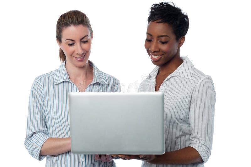Affärskvinnor som bläddrar på bärbara datorn royaltyfri bild