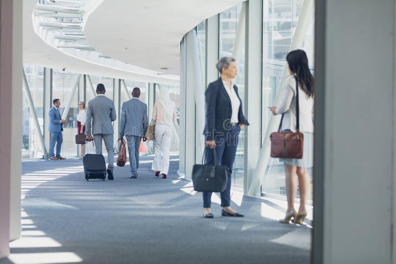 Affärskvinnor som påverkar varandra med de i korridor royaltyfria foton